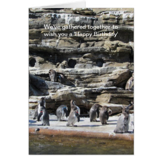 Gathering of Penguins Greeting Card