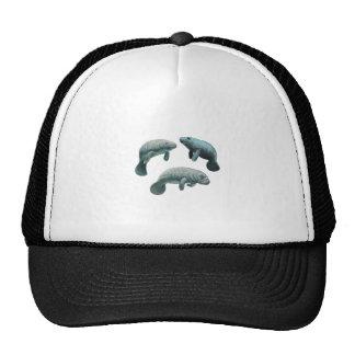 GATHERING OF THREE TRUCKER HAT