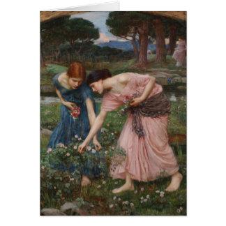 Gathering Rosebuds by John William Waterhouse Greeting Card