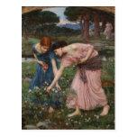 Gathering Rosebuds by John William Waterhouse Postcard