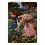 Gathering Rosebuds Greeting Card