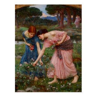 Gathering Rosebuds Post Card