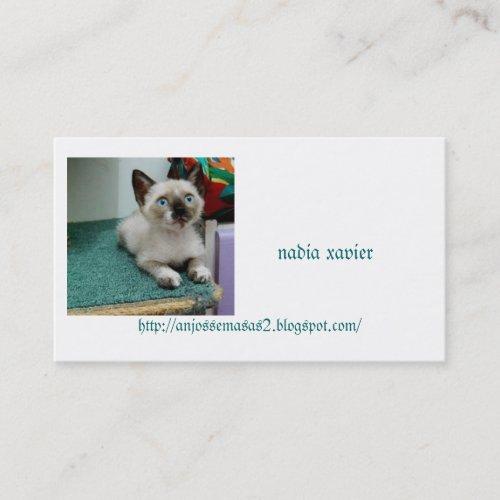 gatinho charmoso profilecard