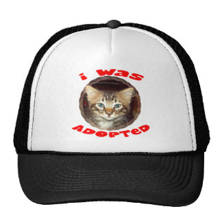 Gatito adoptado gorras