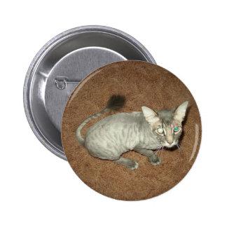 Gatito afeitado pin redondo 5 cm