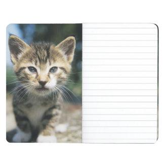 Gatito al aire libre cuadernos
