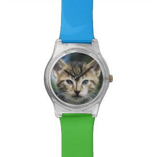 Gatito al aire libre relojes de pulsera