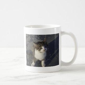 Gatito amistoso taza de café