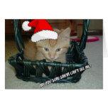 Gatito anaranjado del Tabby del navidad Tarjeta