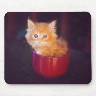 Gatito anaranjado en una taza roja tapete de raton
