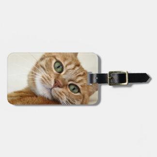 Gatito anaranjado grande etiqueta de maleta
