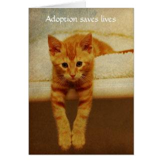 Gatito anaranjado Notecard de las vidas de la Tarjeta Pequeña