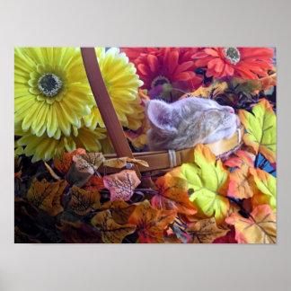 Gatito anaranjado que duerme, gatito del otoño, fl poster