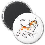 Gatito anaranjado y blanco imán de frigorifico