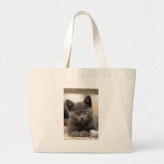 Gatito azul ruso bolsas