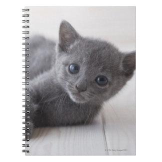 Gatito azul ruso libretas espirales
