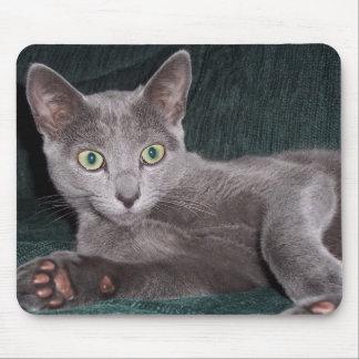 Gatito azul ruso Mousepad Tapete De Raton