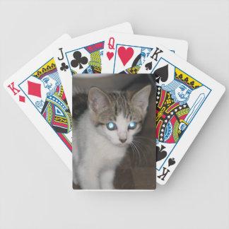 Gatito Baraja Cartas De Poker