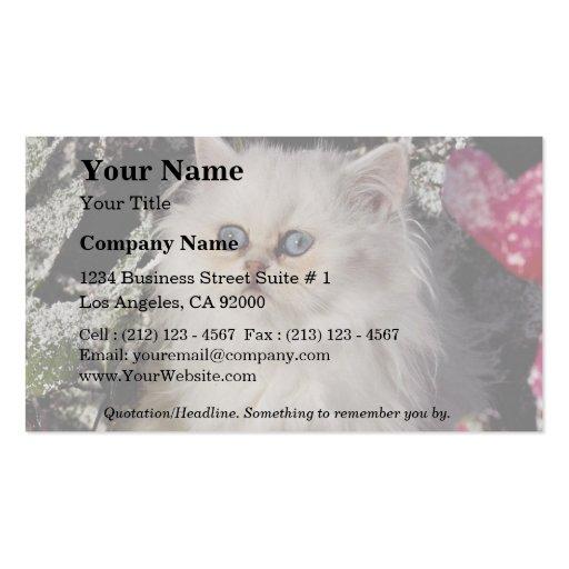 Gatito bicolor único plantillas de tarjetas de visita