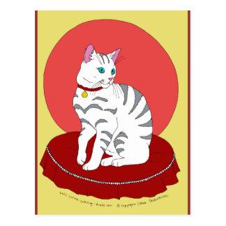 Gatito blanco bonito postal