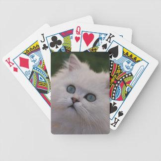 Gatito blanco lindo curioso barajas de cartas