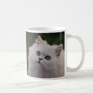 Gatito blanco lindo curioso taza básica blanca