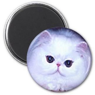 Gatito blanco persa del gatito del gato imán de frigorifico