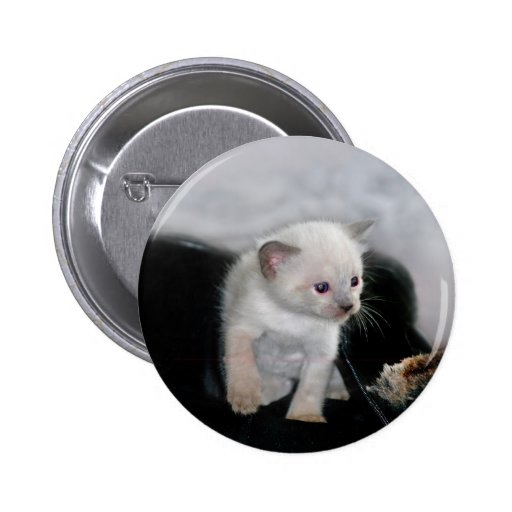Gatito blanco y la bota pin redondo 5 cm