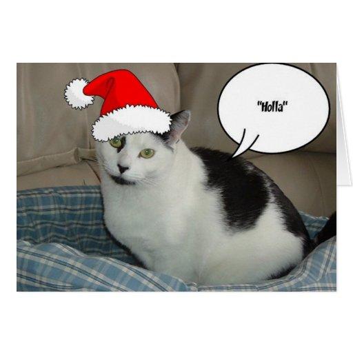 Gatito blanco y negro del navidad felicitacion