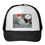Gatito blanco y negro del navidad gorro de camionero