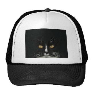 Gatito blanco y negro del smoking con los ojos de  gorras