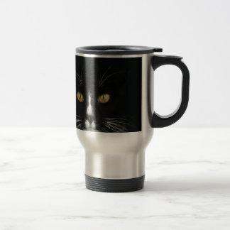Gatito blanco y negro del smoking con los ojos de taza de viaje