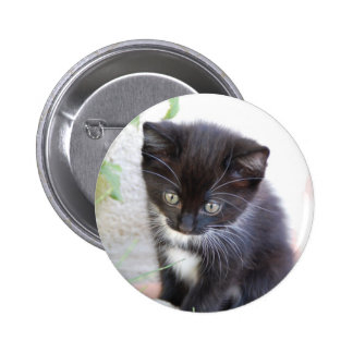 Gatito blanco y negro pin redondo 5 cm