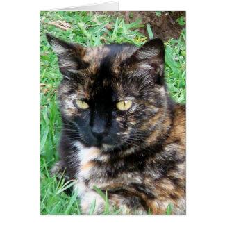 Gatito bonito del tigre tarjeta de felicitación