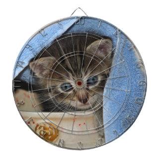 gatito bonito joven de casa mira de vasija
