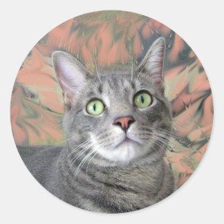 Gatito bonito pegatina redonda