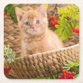 Gatito británico que se sienta en una cesta con la