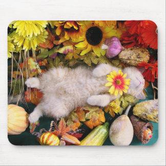 Gatito, calabaza y flores del gatito del bebé de l mouse pads
