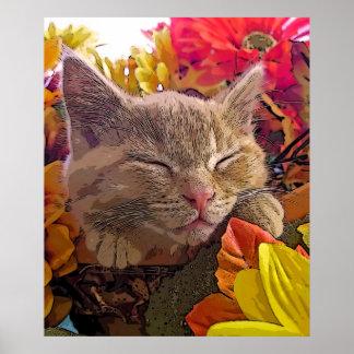 Gatito Catnapping, Face del gato del gatito del Ta Impresiones
