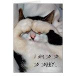 gatito cerrado del ojo, lo siento tan tan tan… felicitación