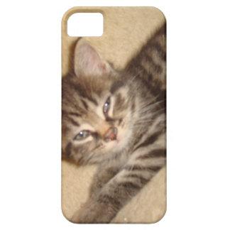 Gatito con actitud funda para iPhone SE/5/5s