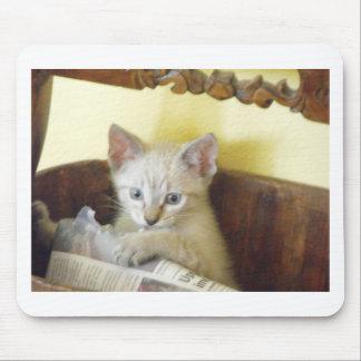 gatito con el periódico alfombrillas de raton