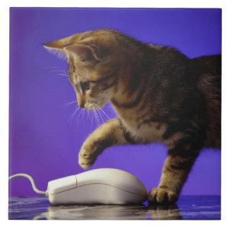 Gatito con el ratón del ordenador azulejo cuadrado grande