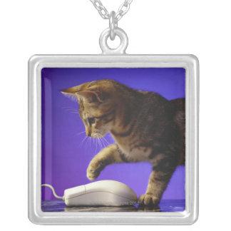 Gatito con el ratón del ordenador collar plateado