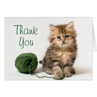 Gatito con hilado verde tarjeta de felicitación