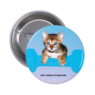 gatito con la pesa de gimnasia blueJP jpg Pin