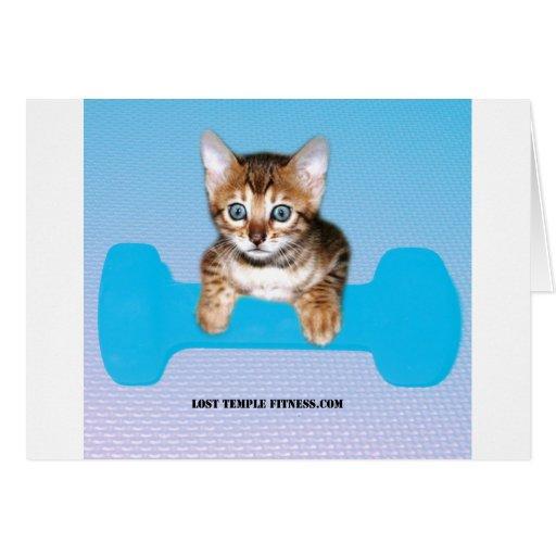 gatito con la pesa de gimnasia blueJP.jpg Tarjeta De Felicitación