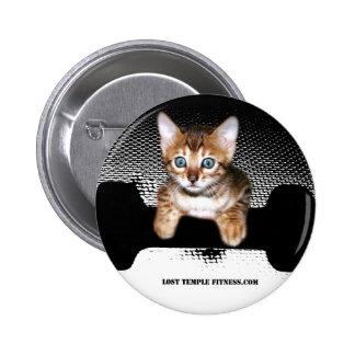gatito con la pesa de gimnasia JP BW jpg Pin