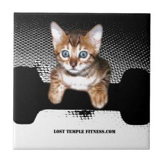 gatito con la pesa de gimnasia, negra azulejo cuadrado pequeño