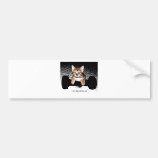 gatito con la pesa de gimnasia, negra pegatina para auto